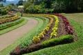 Botanic Gardens (50)