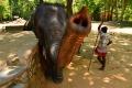 Sloni a ..  (29)