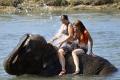 Sloni a ..  (4)
