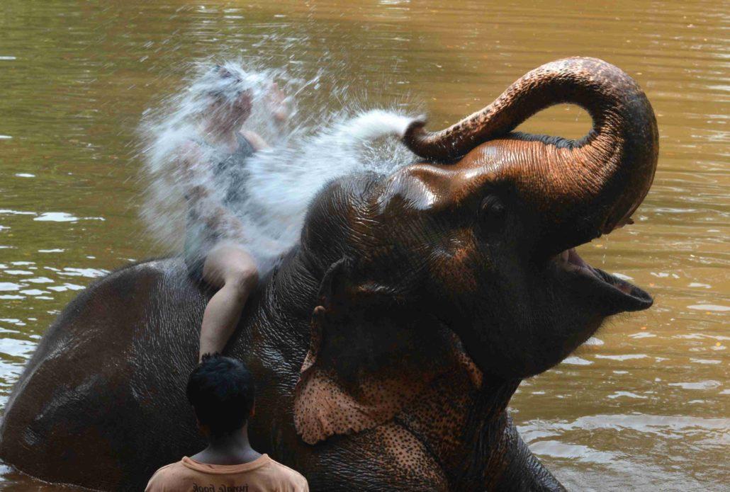 Indie – Goa, 2. – 11. duben 2018